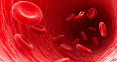 الإنسان ينتج 2 مليون خلية دم حمراء فى الثانية الواحدة